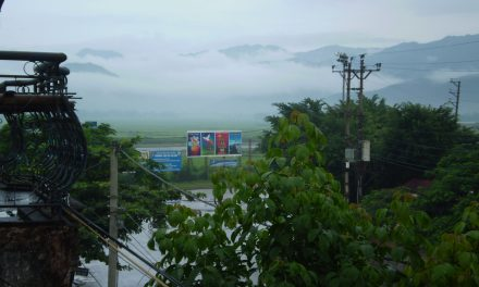 12-13/08/2009 – dal Vietnam