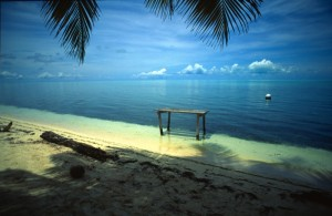 America Centrale - Belize - Half Moon Caye