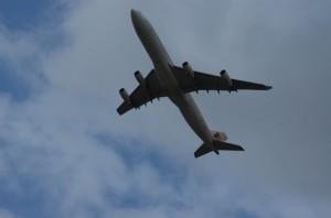 flight for...