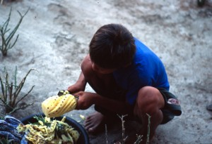 Gili Meno .venditore di ananas