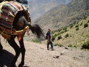 Marocco - Trekking sull'Atlante - verso la meta