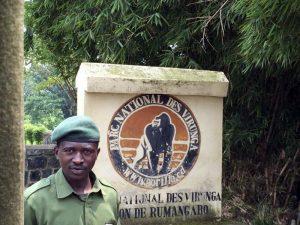 Ingresso Virunga
