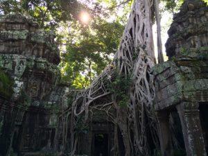Angkor Vat - Cambodia