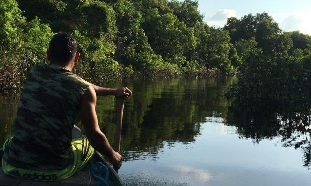 Amazzonia 3: 25 – 31 agosto
