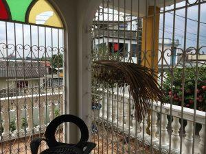 patio - casa di Manuel -Manaus