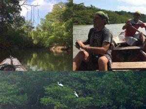 Algodoal river - Brasil