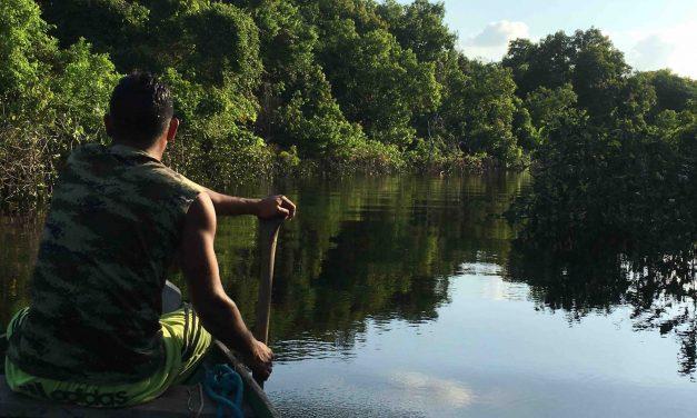 Amazon river: tra Peru Colombia e Brasile 2016