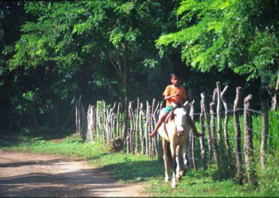 Around Ometepe Island  - Nicaragua, Central America