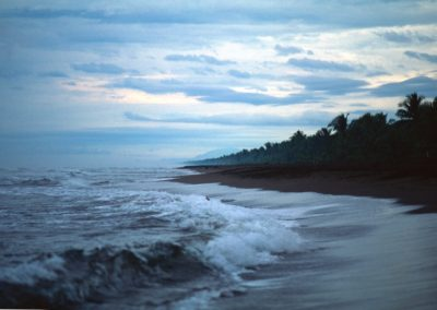 Beach at Sunset - Tortuguero National Park - Costa Rica, Central America
