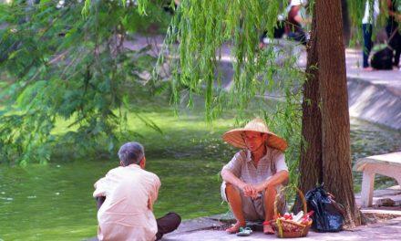 Immagini Vietnam