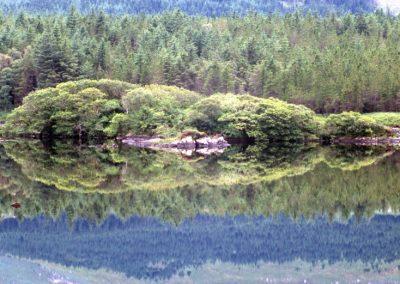 Glass Reflex Bay - Ireland