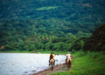 Horses - Ometepe Island - Nicaragua, Central America