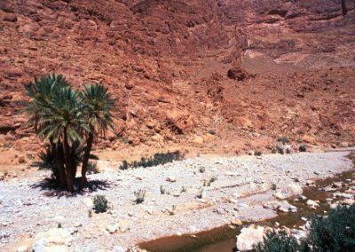 marocco_iii_22_1