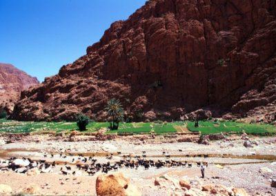 marocco_iii_23_1