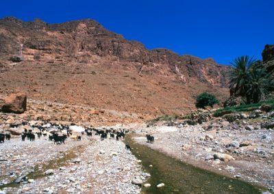 marocco_iii_26_1