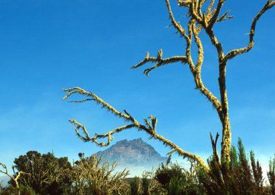 Mount Mawenzi - Kilimanjaro Trekking - Tanzania