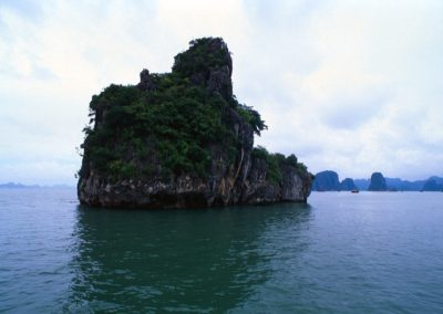 Rock in Halong Bay , Vietnam
