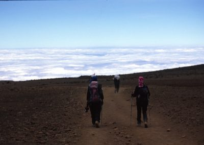 Start of the Descent - Kilimanjaro Trekking - Tanzania