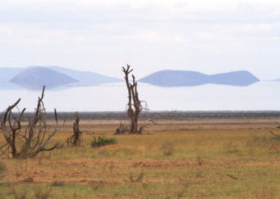 Strange Perspective - Lake Manyara National Park - Tanzania