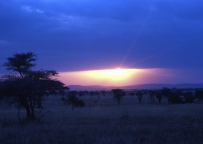 Sunset - Serengeti National Park - Tanzania