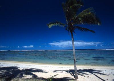 Viti Levu - Coral Coast - Fiji