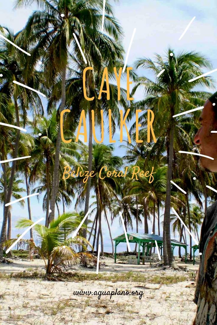 Caye Caulker Blue Hole