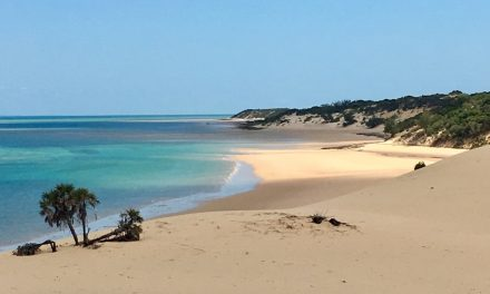 Tofo and Bazaruto Archipelago, The beaches of Mozambique