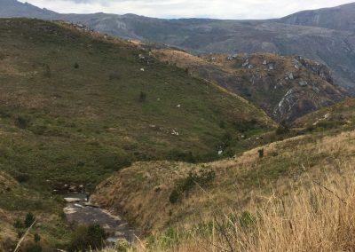 Creek on Mount Mulanje - Malawi