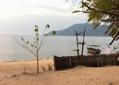 Duck on the beach - Lake Malawi