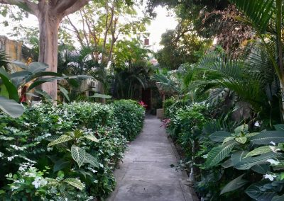 Hostal garden in Inhambane - Africa Tropical -Mozambique