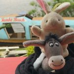 The Donkey and The Rabbit on Lake Kivu, Rwanda!