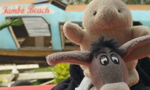 The Donkey and The Rabbit on Lake Kivu, Rwanda!