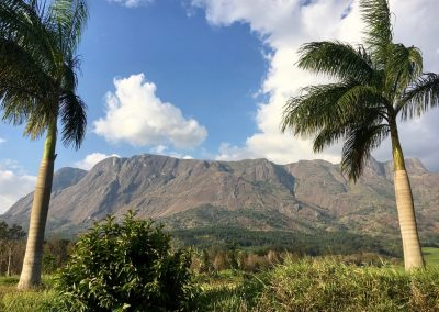 Mulanje Mountain - Malawi