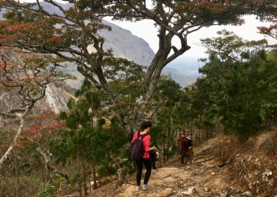 Starting descent - trekking on Mount Mulanje - Malawi
