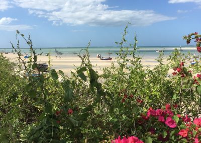 Vilanculo Beach 3 - Mozambique