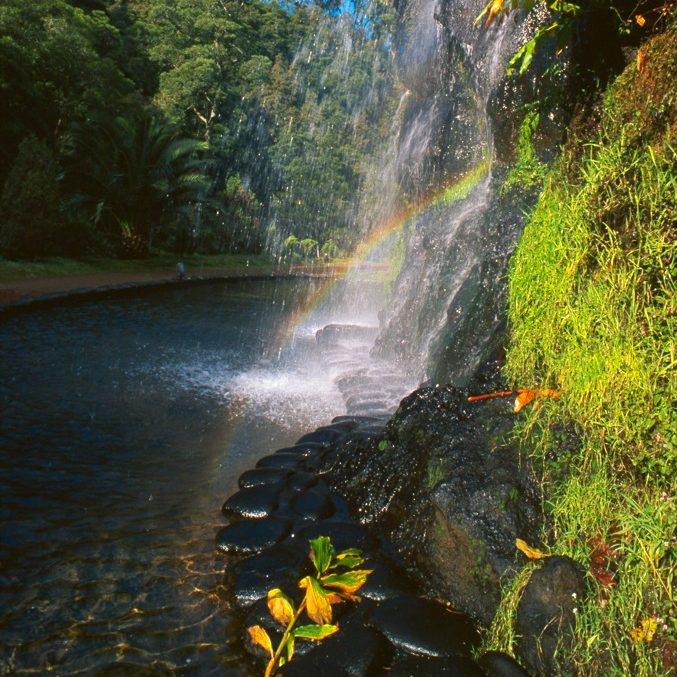 Beauty in the Azores Islands