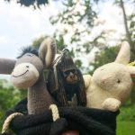 the Donkey and the Rabbit with their friend in Virunga!