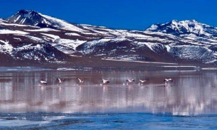 Laguna Colorada – Bolivia