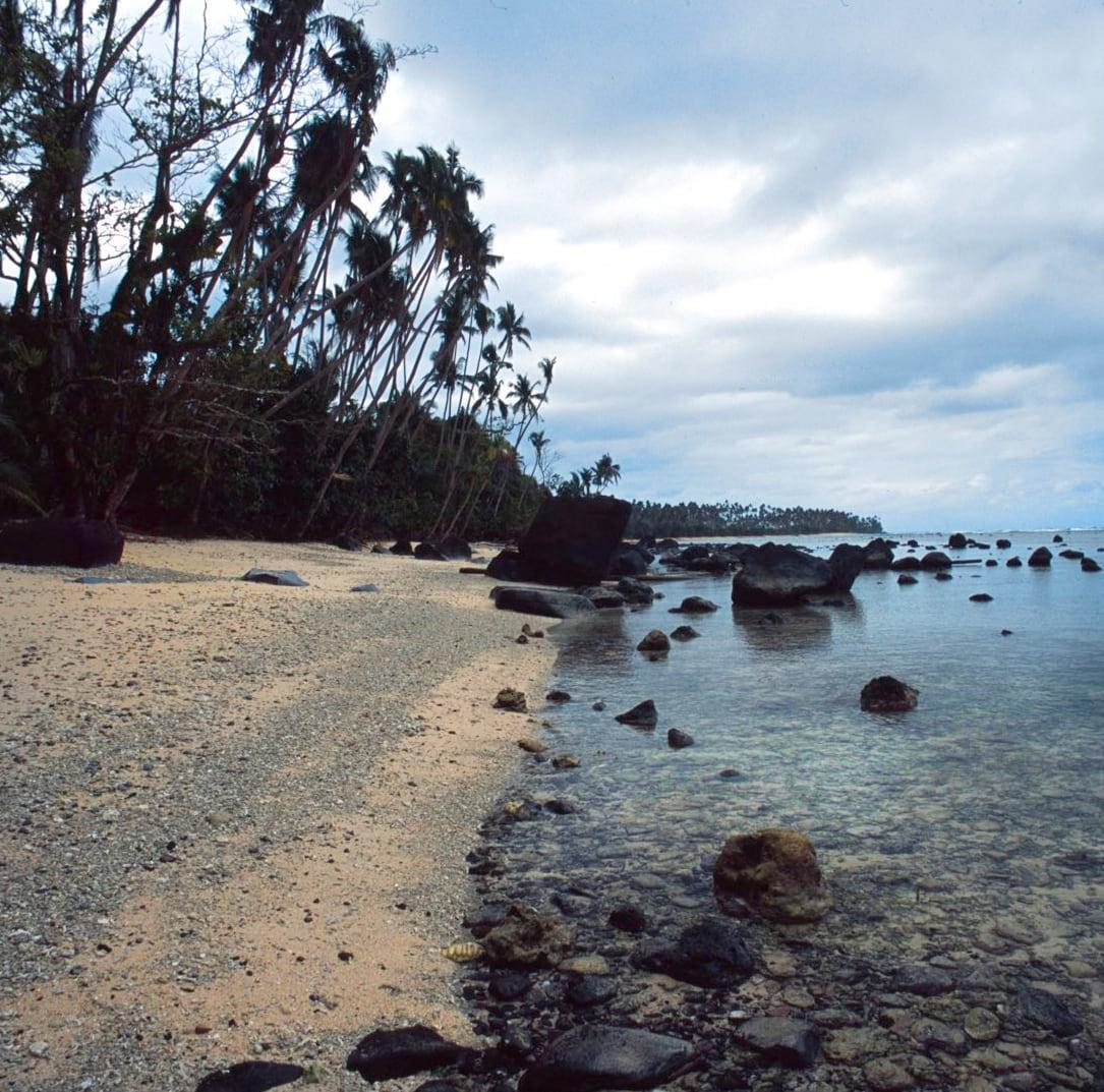 Lavena Coastal Walk - Fiji Island
