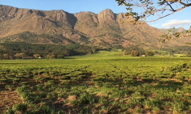 Trekking in Malawi