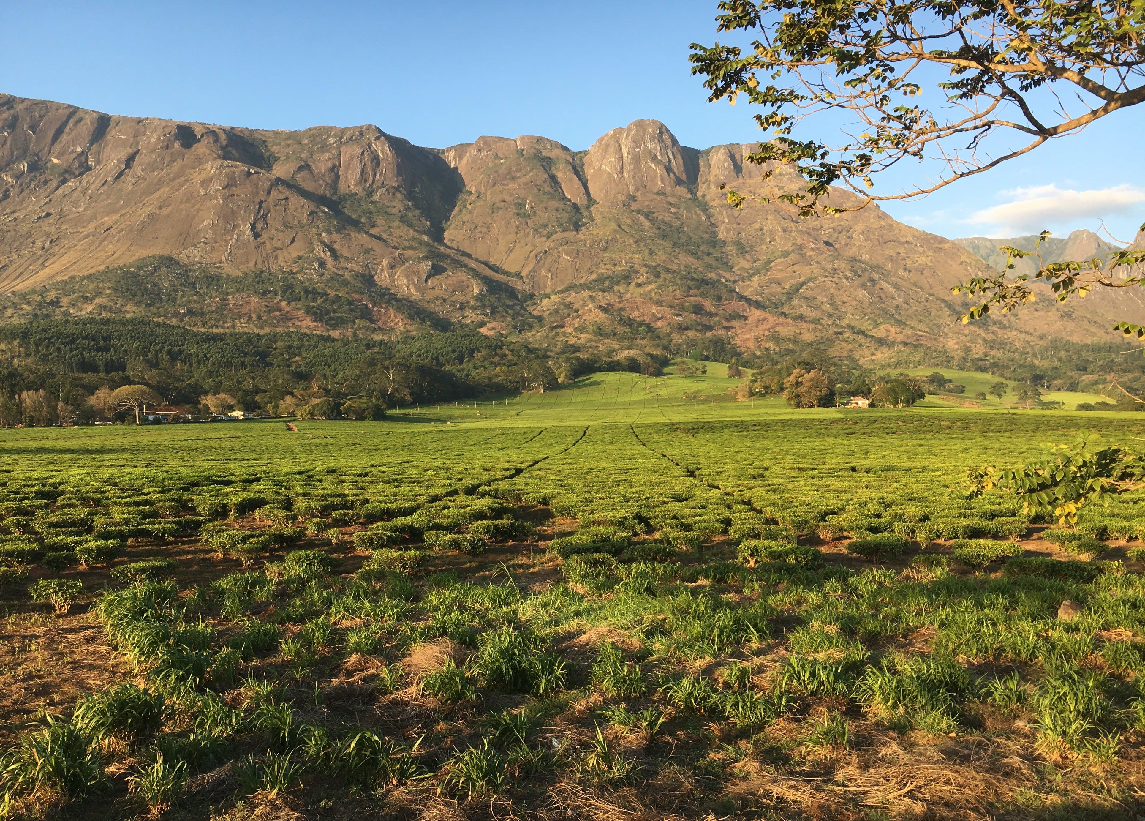 Trekking-in-Malawi