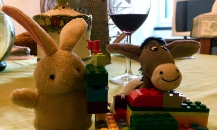 The Donkey and the Rabbit at home dreaming of the future